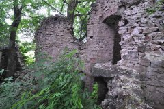 Mirbach-Ruine.jpg