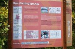Eichholz_ARN9585.jpg